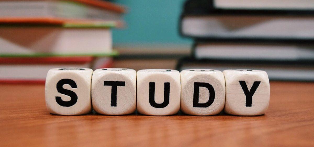 studieren Flüchtling